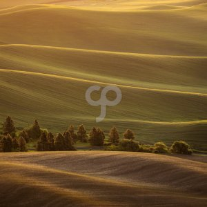 valentin armianu-sunrise over rolling country hills in washington usa-25